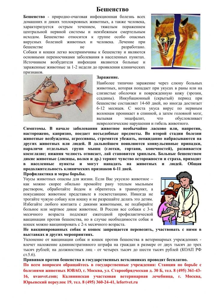 Памятка для населения для профилактики бешенства с картинками 1 (1)-1.jpg